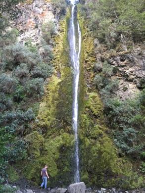 41m Dog stream waterfall on Mt Isobel