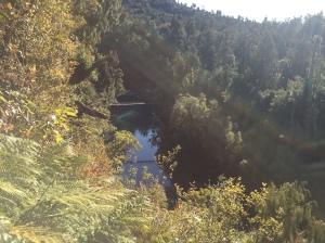 View of the swing bridge