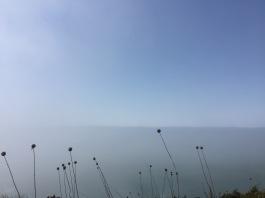 When the sea fog rolls in.